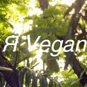 Я Vegan подбор песен на гитаре