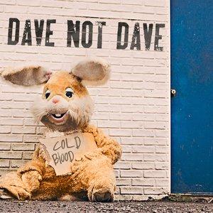 Dave not Dave подбор песен на гитаре